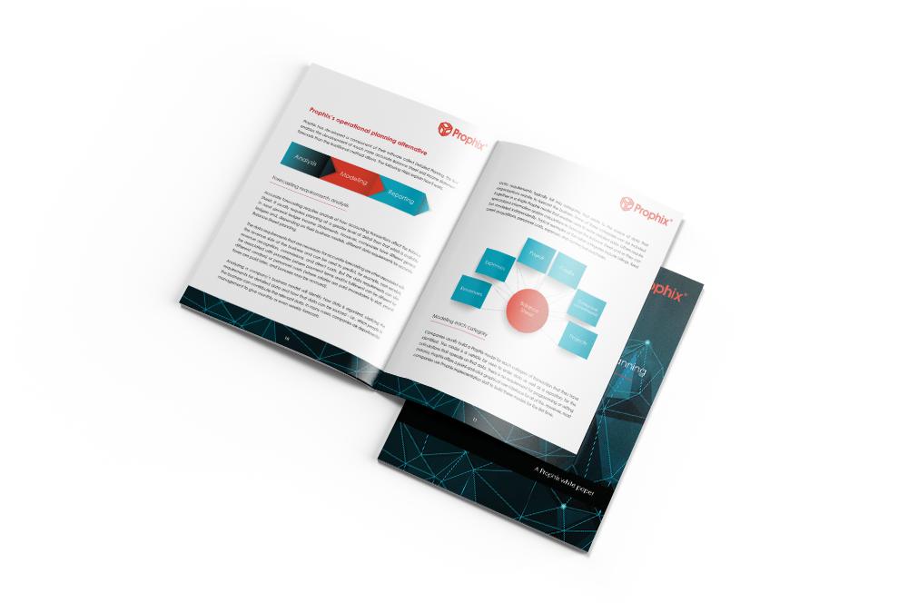 Balance Sheet and Cashflow Planning eGuide